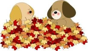 dogsnleaves
